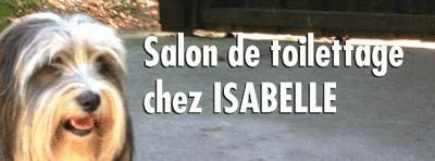 Logo Salon de Toilettage chez Isabelle