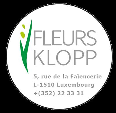 Logo Fleurs François Klopp