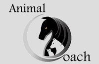 AnimalCoach - Marianne Lequeux