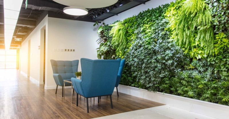 Plant a business: how to put your employees green in an original way