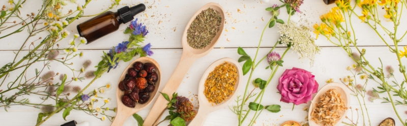 Naturopathy, a global consideration of the individual
