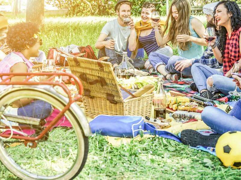 How to organize a memorable picnic?