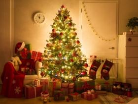 7 assurances indispensables pour survivre aux fêtes de fin d'année