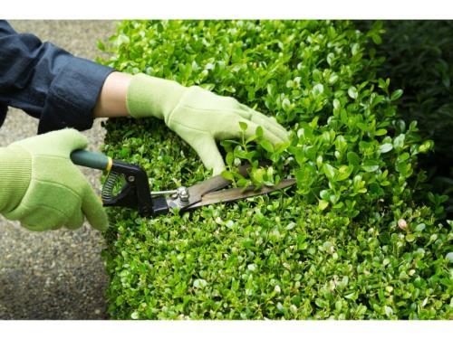 Entretien d'espaces verts