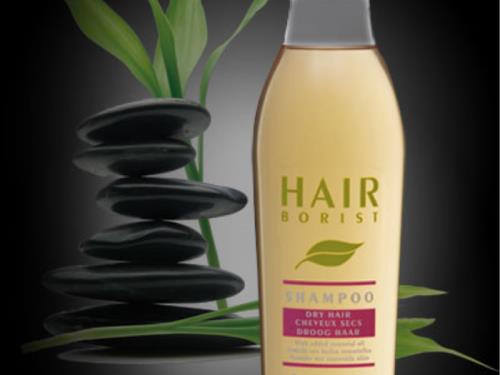 Hairborist : shampooing cheveux sec