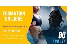 Fomation EMS en ligne