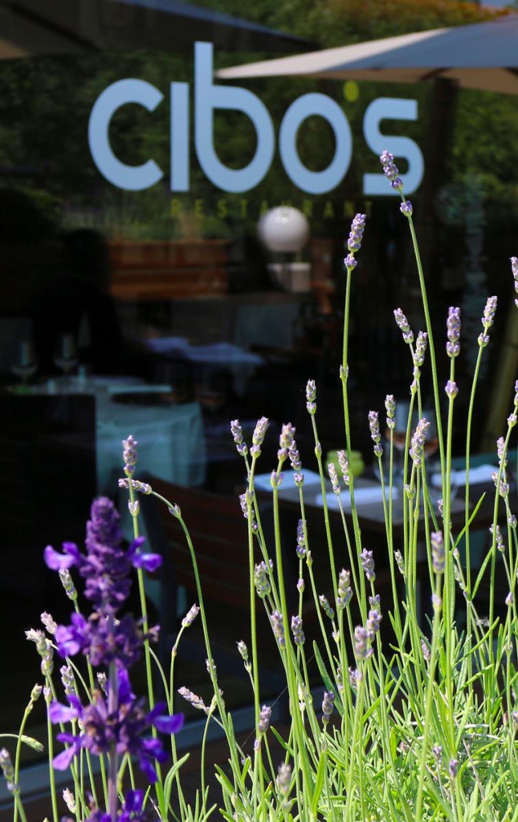 Restaurant cibo 39 s bettembourg french food semi gourmet for Bettembourg piscine